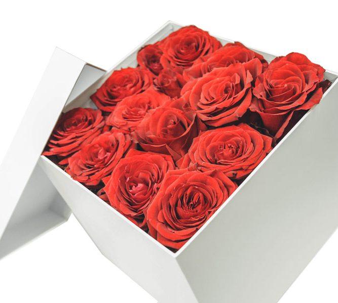 Scatola piccola solo rose 15 steli (4)