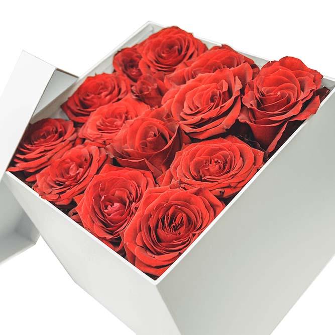 scatola media rose