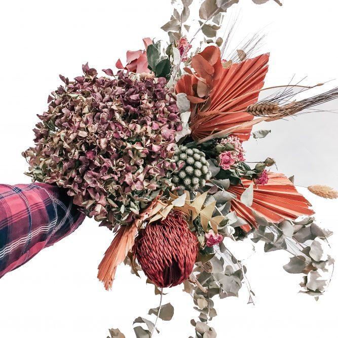 signorelli – vendita fiori e piante online