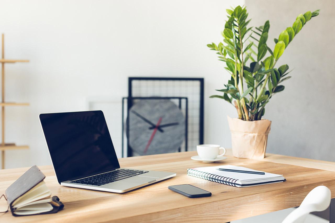 Smartworking-e-piante-da-ufficio